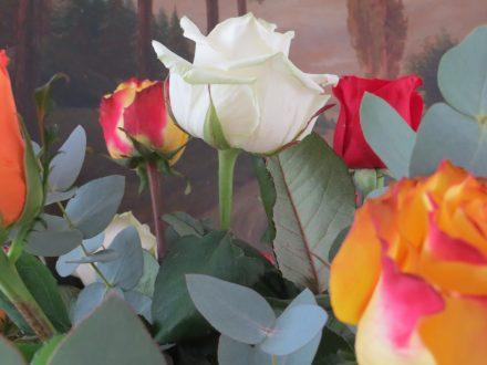 Blumenstrauß | Bild: Martin Dubberke
